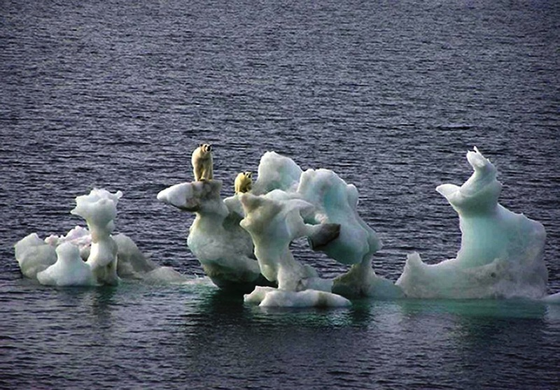 This photo released by the Canadian Ice Service on Friday Feb. 2, 2007 and taken by photographer Dan Crosbie in 2004 shows two polar bears on a chunk of ice in the arctic off Northern Alaska. A state legislative committee voted Thursday, May 9, 2013 to put Maine back on track to develop a finished plan for adapting to its changing climate. (AP Photo/Dan Crosbie/Canadian Ice Service via PA, HO)