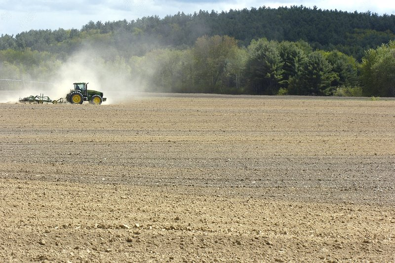 A wholesaler charges that U.S. potato farmers boost prices.