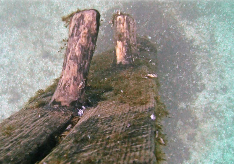 In this October 2012 image from video, timbers protrude from the bottom of Lake Michigan.They were discovered by Steve Libert, head of Great Lakes Exploration Group, in 2001.