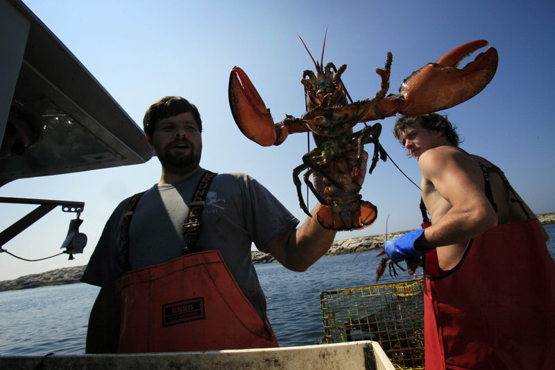 A coalition of Maine business and environmental groups say pollutants and warming ocean water threaten Maine's lobster industry.