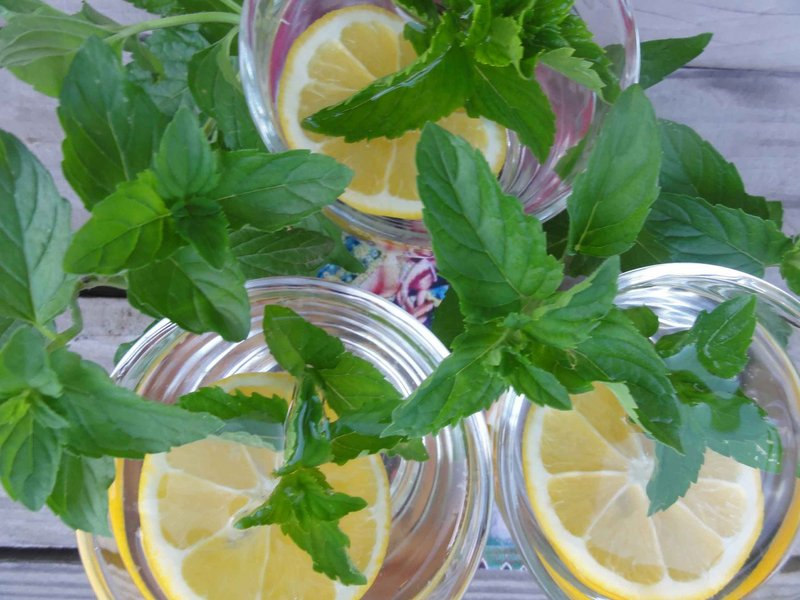 Lemon and mint infusion is good hot or cold.