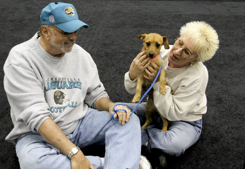 MGM Grand poker dealer Dar Reike holds her dog, Alexia, next to her husband, Rick Reike. Her company offers discounted pet health insurance, but she declined it.