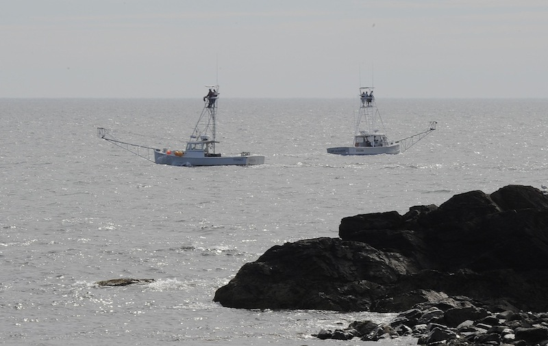 State and local law enforcement officials and local fishermen. seen above, search for Billy McIntire, 51, a boater who went missing Thursday night about one mile off Perkins Cove in Ogunquit. Search