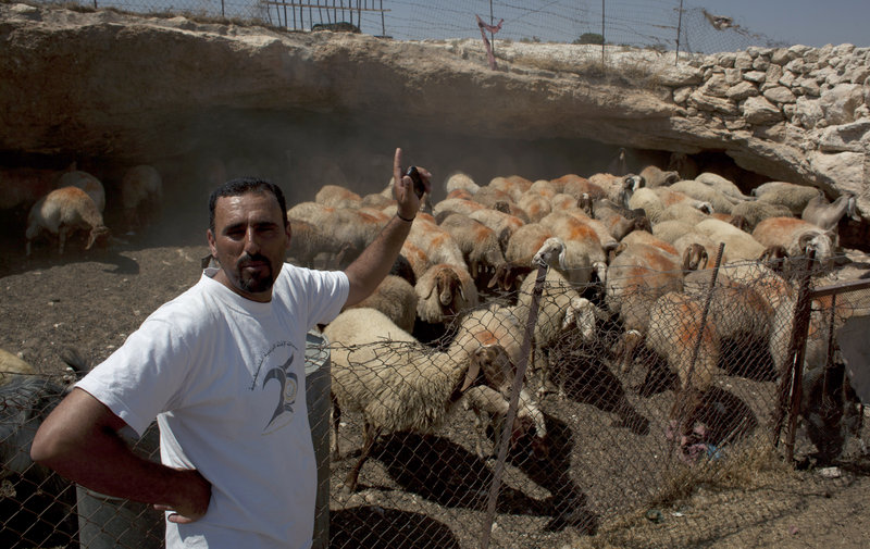 Palestinian shepherd Najati Abu Ali, 40, was a witness to the recent attack on his fellow shepherd Najeh Abu Ali, 47. Palestinians see the attacks as an attempt to scare away villagers.