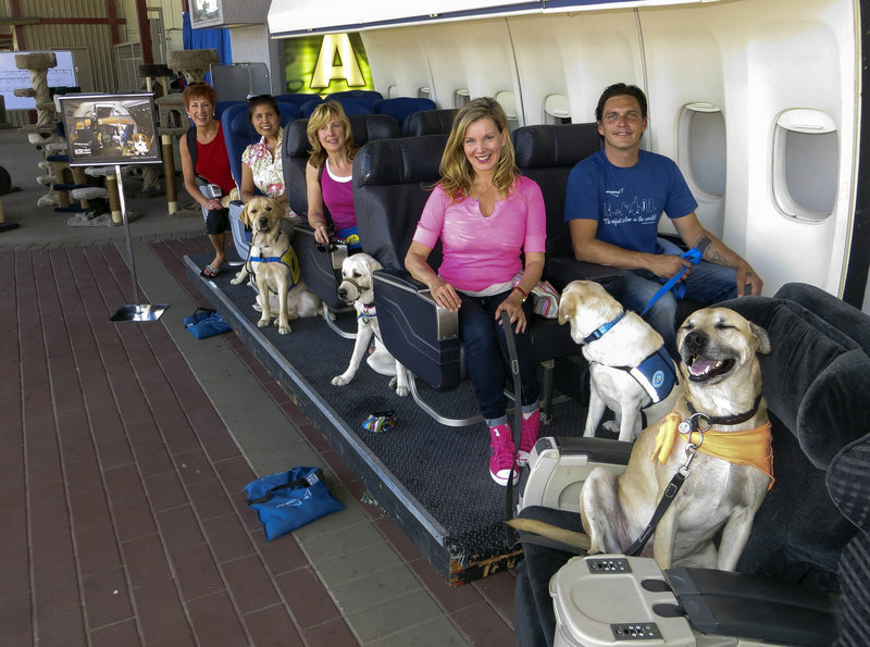 """Megan Blake, center, the Air Hollywood K9 Flight School director, is seen with her dog, Super Smiley, far right. The other dogs and """"passengers"""" are with the Canine Companions for Independence program, as they sit on board a flight simulator at the America's Family Pet Expo in Costa Mesa, Calif."""
