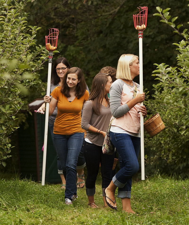 A group of college friends from Massachusetts, picking poles in hand, sets off at Hansel's to pick their own.