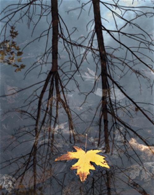 """""""Local Color, Bridgton, Maine,"""" from """"Light Moments,"""" photography by Ed Stevens, continuing through Saturday at Frost Farm Gallery in Norway."""