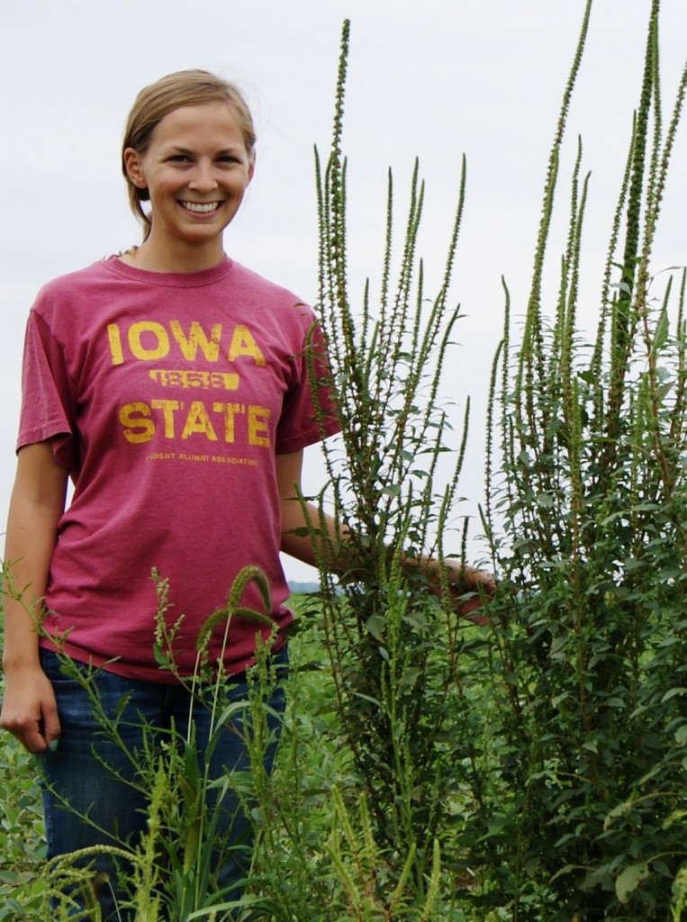 Iowa State University graduate student Meaghan Bryan stands beside a Palmer amaranth plant last August.