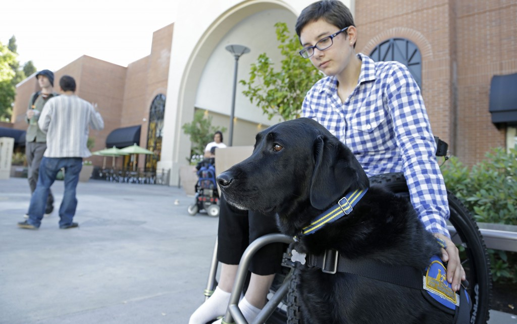 """Wallis Brozman, 27, sits with her service dog, Caspin, outside a shopping mall in Santa Rosa, Calif. Brozman, who has dystonia, says phony service animals pose a threat to legitimate ones. """"When my dog is attacked by an aggressive dog, he is not sure what to do about it and looks to me. It becomes a safety issue"""" for both dog and owner, Brozman said."""