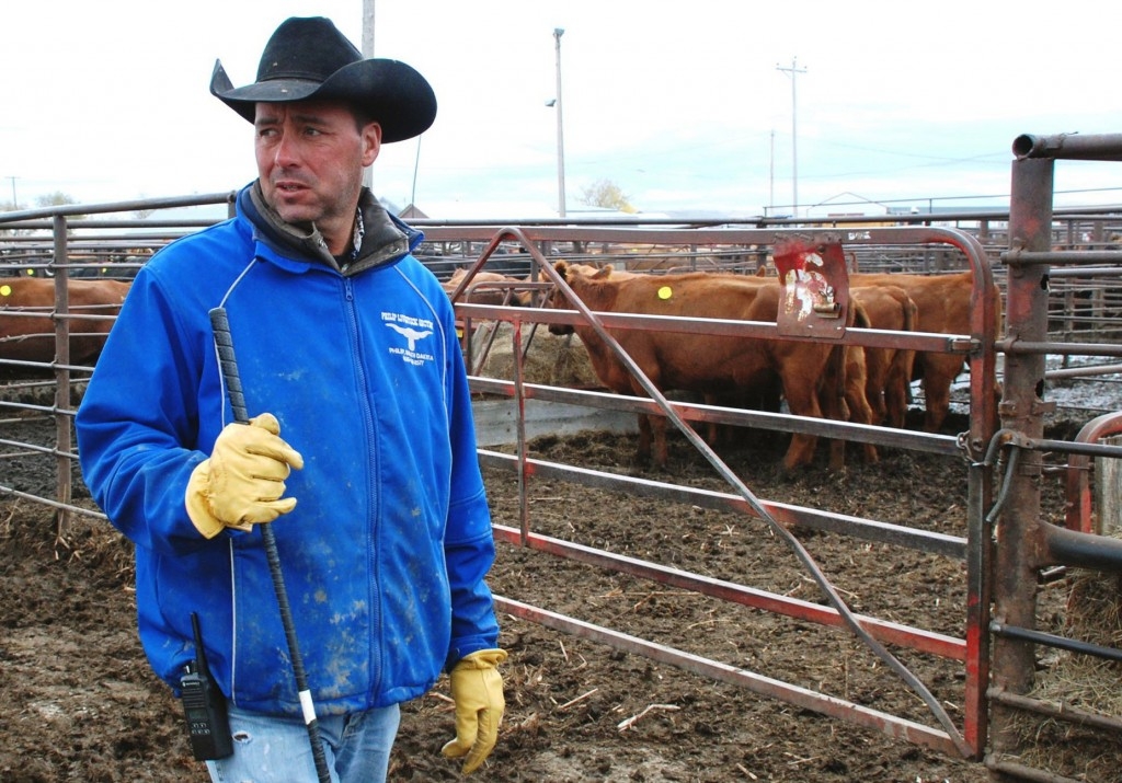 Joe Carley is shown Wednesday at the Philip Livestock Auction in Philip, S.D., where he works to help make ends meet after losing numerous livestock in a freak blizzard.
