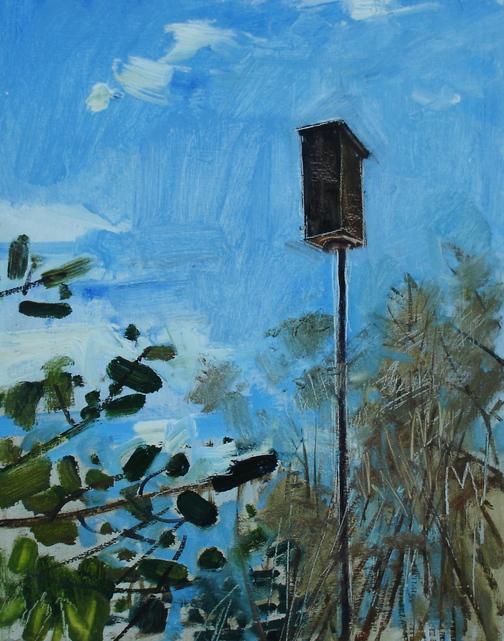 """Bluebird Nest Box April"" by Jeff Epstein."