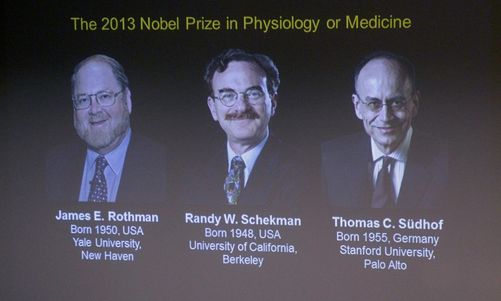 Images of James Rothman and Randy Schekman, of the U.S., and German-born researcher Thomas Suedhof are projected on a screen in Stockholm, Sweden, Monday after they were announced as the winners of the 2013 Nobel Prize in medicine.