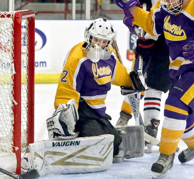 Jason Blier returns as the starting goalie for Cheverus, which hopes to build on last year's trip to the Western Class A semifinals.