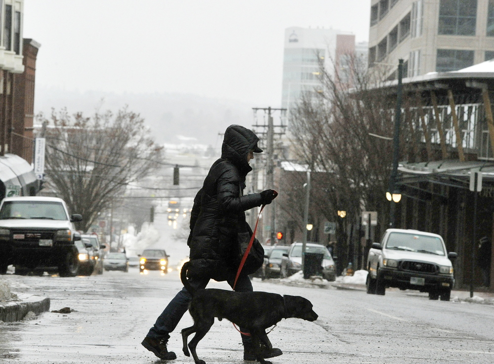 A pedestrian and her dog make their way across an icy intersection on Preble Street in downtown Portland on Monday morning. Few lost power in Cumberland County, but the ice storm left roads slippery during the commute Monday morning.
