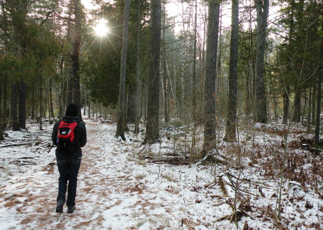 Brown's Woods on outer Ohio Street in Bangor has a nearly mile-long trail that loops through woods full of mature white pines and hemlocks. It'e definitely worth a look.