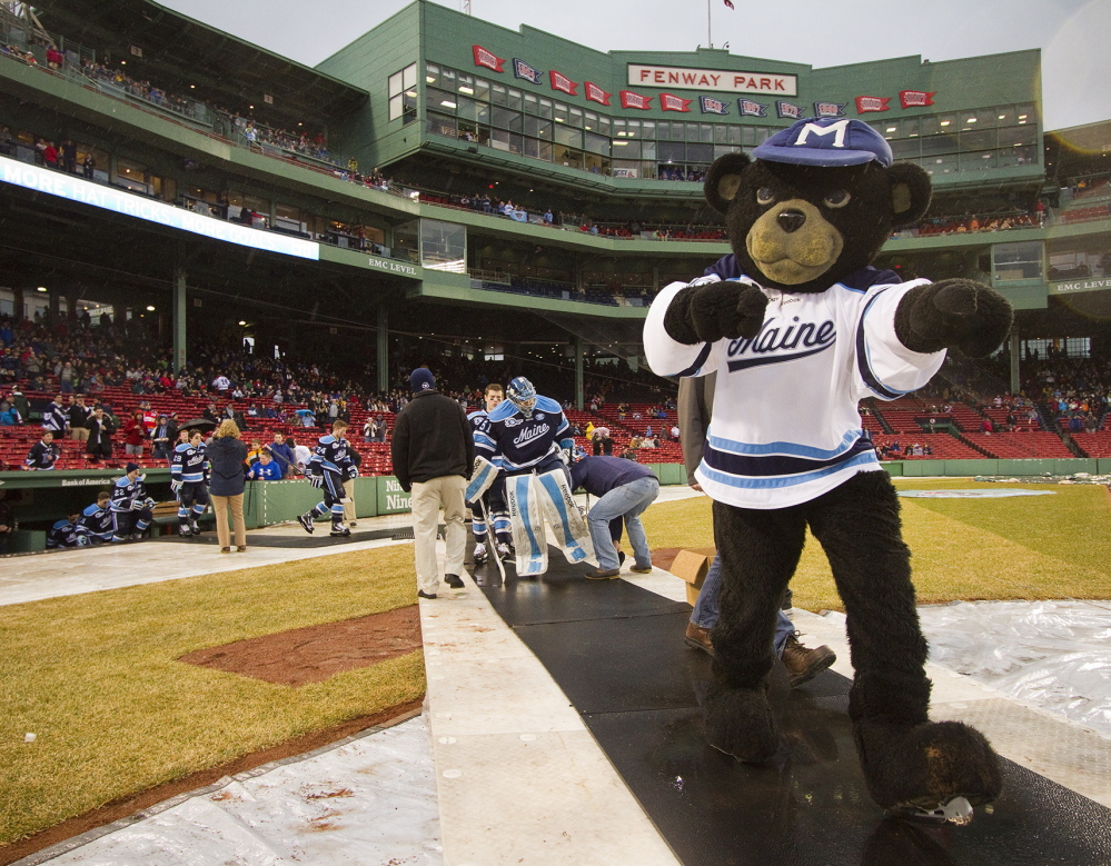 The University of Maine mascot leads the team onto the ice to play Boston University at Fenway Park for the Hockey East Frozen Fenway game Saturday. Wasn't much longer before the Black Bears were headed the other way, back to the dugout to wait out a rain delay.