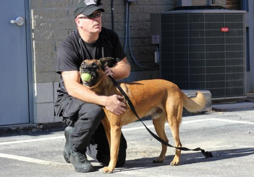 Cpl. Richard Greene, a corrections officer K9 handler at Maine State Prison in Warren, plays ball with TJ, a Maine Department of Corrections K9 officer due to receive a ballistic vest thanks to a donation from Economy Motors of Hermon.