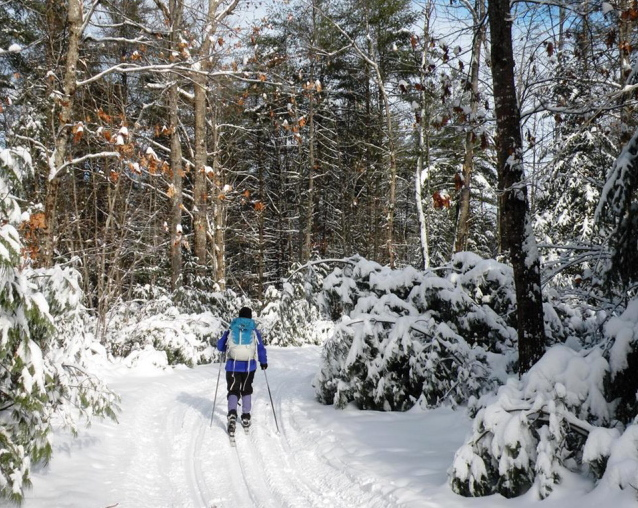 Carter's X-C Ski Center in Oxford offers a laid-back woodsy environment that's perfect for beginners and intermediates, as well as advanced skiers of all ages.