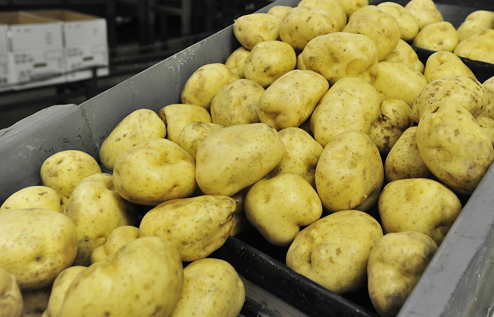 Money spent lobbying to include potatoes, Maine's top crop, on the list of groceries subsidized by the Women, Infants and Children nutrition program would be better put toward educating the public about tasty and nutritious ways to prepare potatoes.