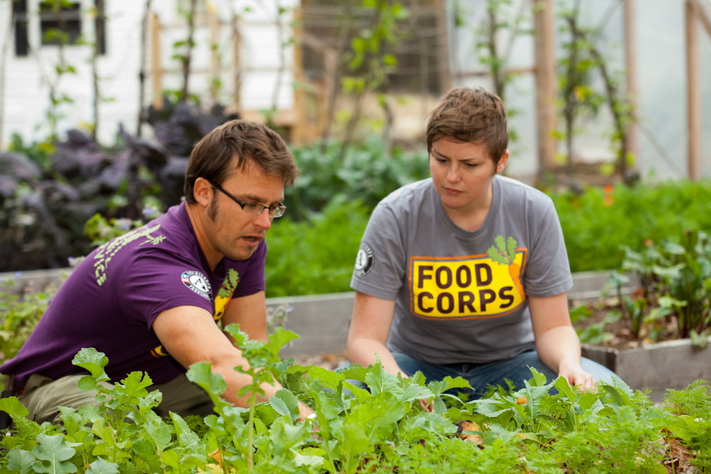 Daniel Rennie and Laura Budde, who both got involved in Maine agriculture through the national FoodCorps program, work in the raised beds at the Roberts Farm Science and Agricultural Learning Center in Norway. Students from the Oxford Hills area learn about farming and food at the center.