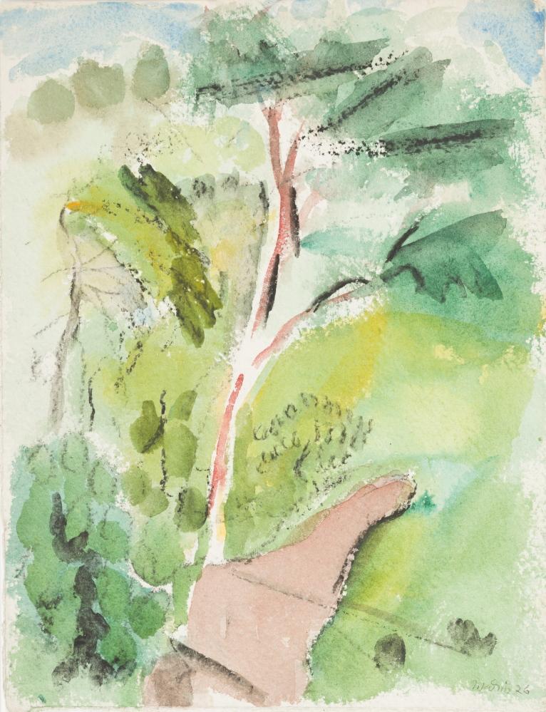 Tree, Stonington, Deer Isle, 1926. Watercolor on paper by John Marin.
