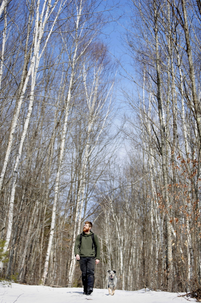 Dwarfed by birch trees, Andy McEvoy, director of Hidden Valley Nature Center, and dog Abe enjoy a walk on one of the many groomed trails at the Hidden Valley Nature Center in Jefferson.