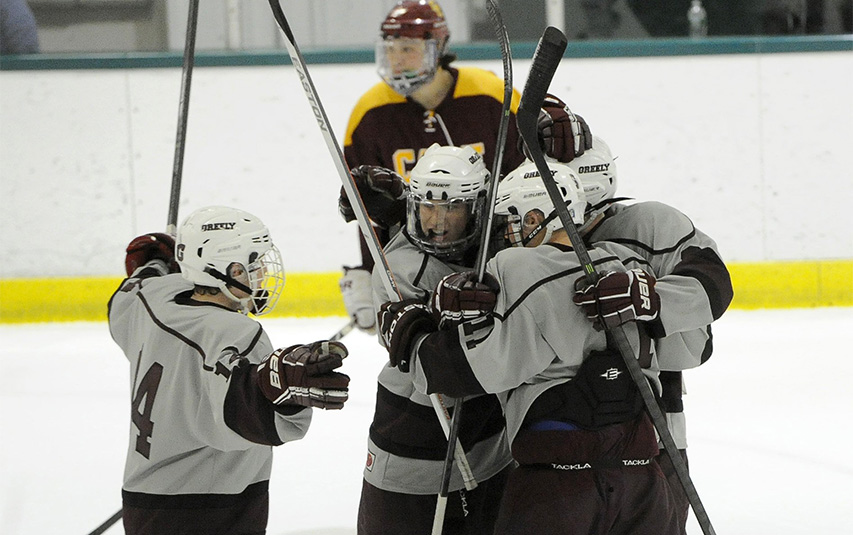 Greely's Peter Hurley (14) joins his teammates as they celebrate their third goal in the first period against Cape Elizabeth in the Class B West quarterfinal at Family Ice Center in Falmouth.