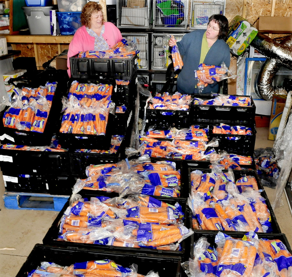 Somerset Humane Society employee Christine Coolidge, left, and manager Hattie Spaulding on Monday look over some of the tons of carrots that were left at the Skowhegan organization by a trucking company after they were rejected by a supermarket because of some bruising. The produce is good and the animal shelter is looking to give away and sell it.