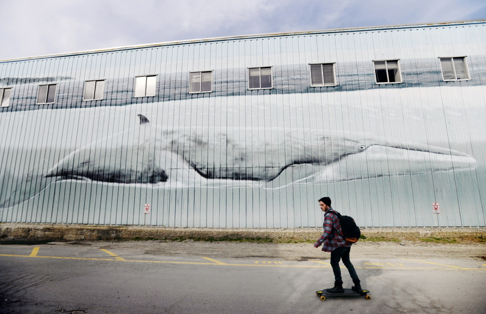 A skateboarder rolls past the whale mural on one side of a city-owned building on the Maine State Pier this week. Robert Wyland painted the wall in 1993, but renovation plans mean changes are in store for the landmark artwork.