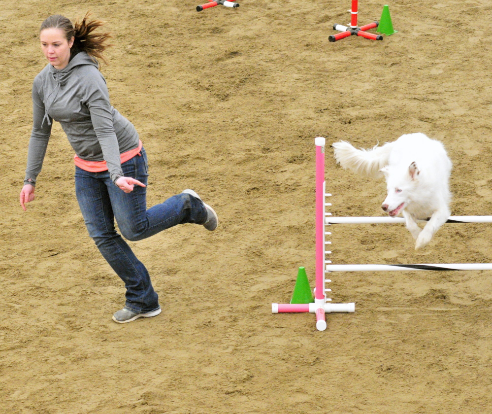 Katie Anderson of Freeport leads her border collie Denali over a hurdle Saturday during a dog agility contest.