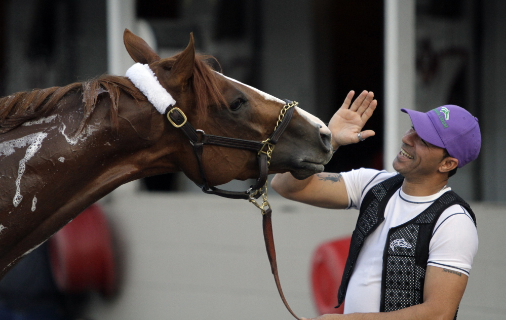 Exercise rider William Delgado plays with Kentucky Derby hopeful California Chrome after a morning workout at Churchill Downs on Wednesday in Louisville, Kentucky.