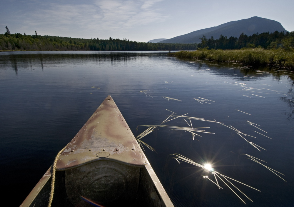 Henry David Thoreau didn't carry a camera, but Texan Scot Miller did, and his images, such as this one of Little Spencer Pond pictured from a canoe, is on display at the Harvard Museum of Natural History.