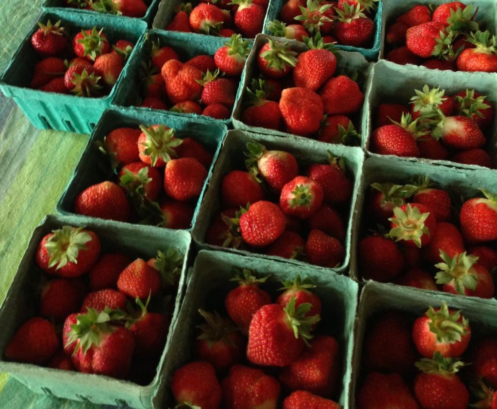 Maine strawberries