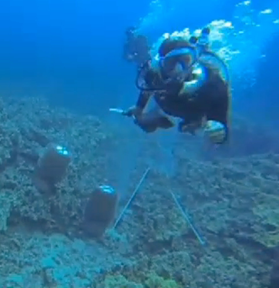 A scuba diver swims toward activist Rene Umberger moments before ripping her air supply regulator out of her mouth near Kona, Hawaii, from a video released by Umberger.  The underwater scuffle is highlighting a long-running dispute pitting environmentalists who want to shut down the industry in Hawaii and collectors who gather aquarium fish and sell them for a living.