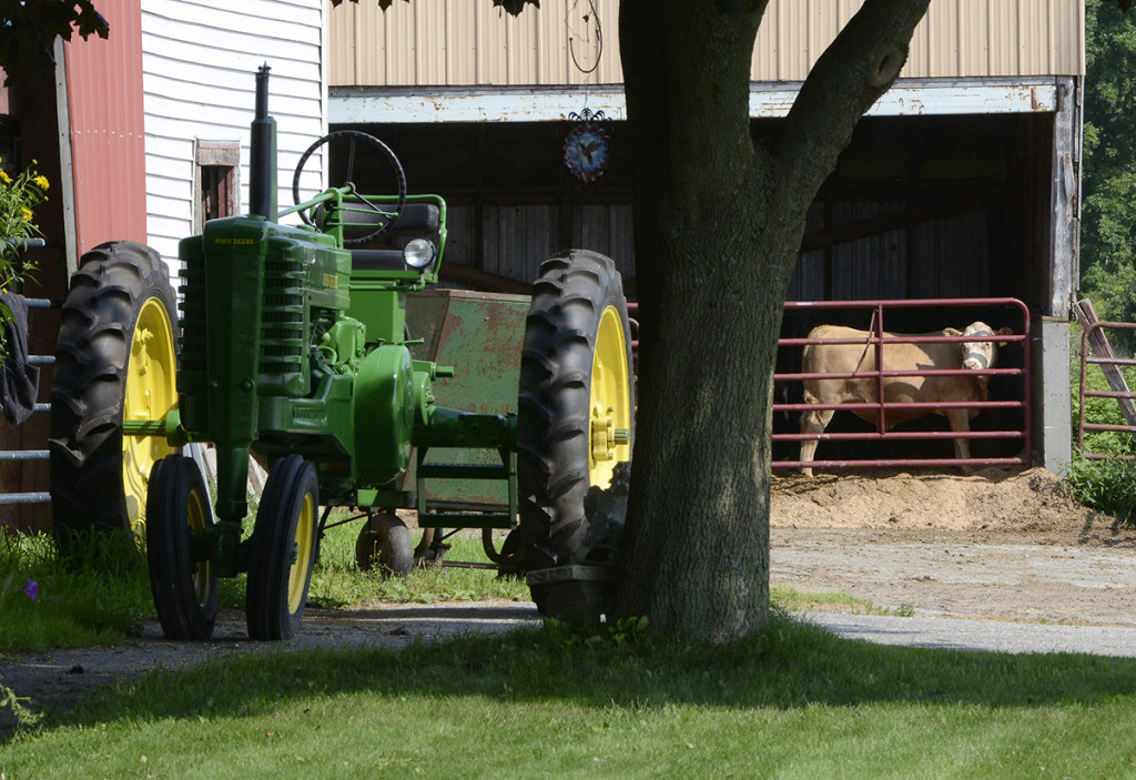 The Bisson family farm in Topsham is known for its beef, pork, lamb and dairy products.