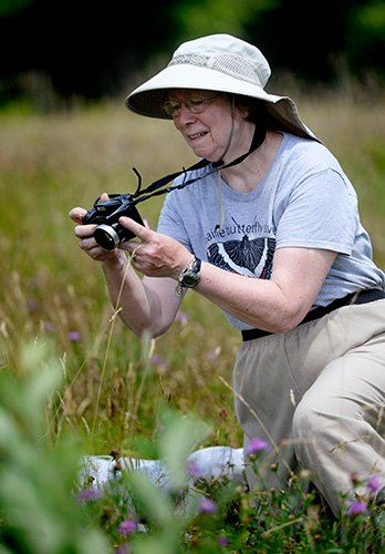 Rose Marie Gobeil stops to photograph a butterfly along the Sylvan trail in Saco Tuesday. Shawn Patrick Ouellette/Staff Photographer