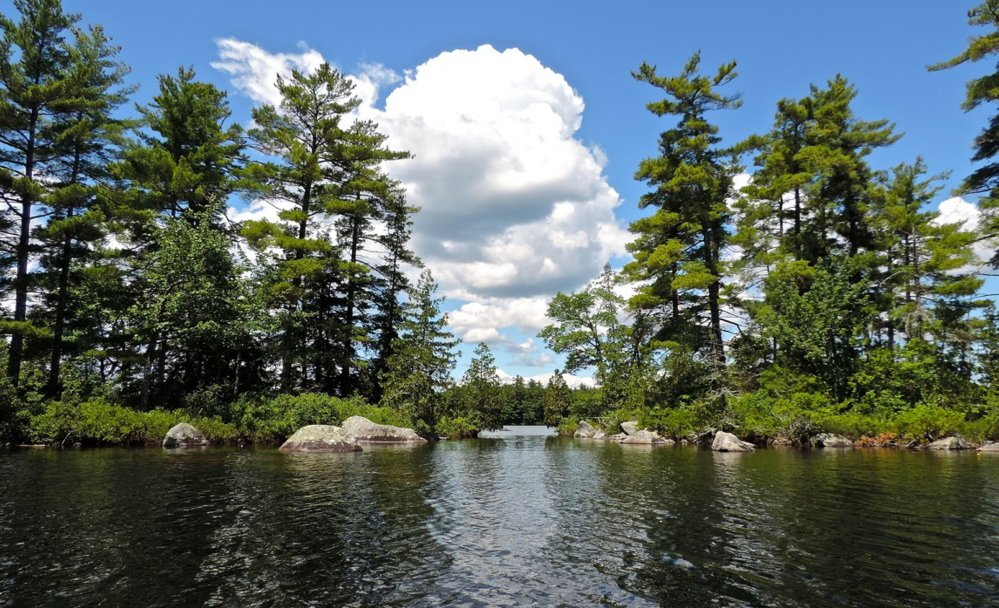 Long Pond is a picture of serenity for the paddling public getting the chance to behold nature, with spots aplenty offering magical views.