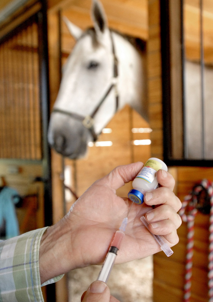 A doctor prepares an Eastern Equine Encephalitis vaccine for horses at a farm in Gray in 2009, a year when Maine experienced an unprecedented rate of EEE, which infected 19 animals.