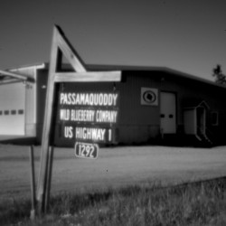 The Passamaquoddy Wild Blueberry Co. in Columbia Falls on Route 1 in Down East Maine was among the investments made by the tribe in the years after the land claims settlement of 1980. Attorney Tom Tureen's firms brokered a series of investments that drew national media attention.