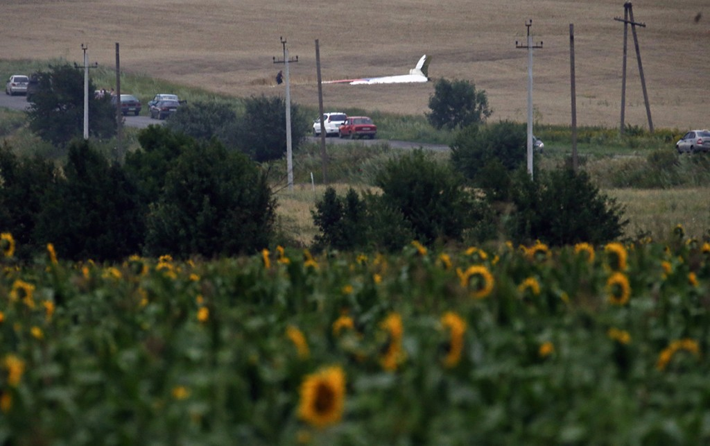 The wreckage of a Malaysia Airlines Boeing 777 plane (back) is seen, with sunflowers in the foreground, near the settlement of Grabovo in the Donetsk region. The Malaysian airliner Flight MH17 was brought down over eastern Ukraine on Thursday, killing all 295 people aboard and sharply raising stakes in a conflict between Kiev and pro-Moscow rebels in which Russia and the West back opposing sides.