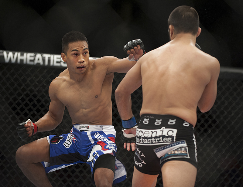 Nolan Ticman, red gloves and Frankie Saenz, blue gloves, square off in a bantamweight bout at the Cross Insurance Center in Bangor on Saturday for  Ultimate Fighting Championship fight night. Kevin Bennett/Special to the Telegram