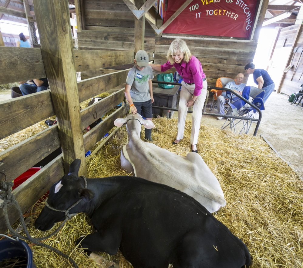 Wisconsin democratic gubernatorial candidate Mary Burke talks with Tyler Gilbertson, 11, about his cow, Emma.