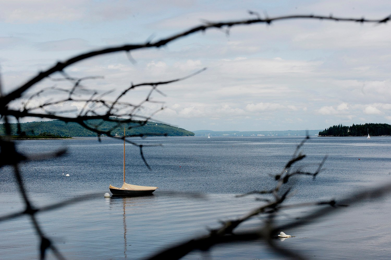 A view across Penobscot Bay from Islesboro.