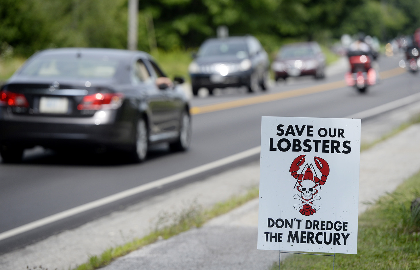 A sign opposing the dredging project on a lawn on Route 1 in Searsport.