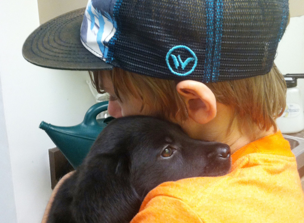 This photo provided by Dianne Larson shows her son, Tanner, with 8-week-old Ruby at the Best Friends Animal Society in  Los Angeles. Tanner was working with puppies and met Ruby, a black Lab.