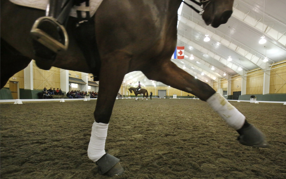 Equestrian Center Gives New Meaning To Elite The