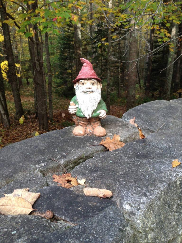 Garden Gnomes An Earthy Delight The Portland Press