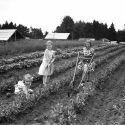 32597-July5-1942_web