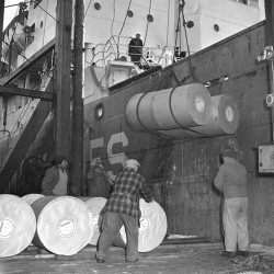 Dockworkers unoloading rolls of newsprint paper, 1955. From the Portland Public Library archival collection of Portland Press Herald, Maine Sunday Telegram and Evening Express photos.
