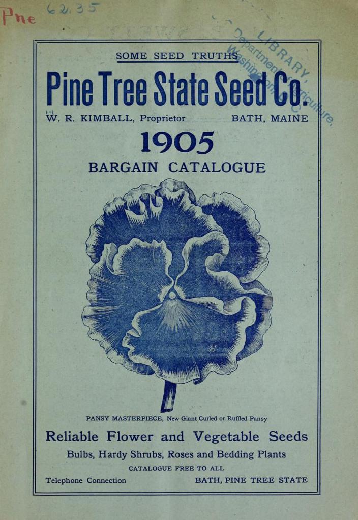 284625-pinetree